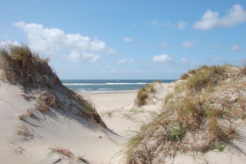 Texelse Strand en Duinen