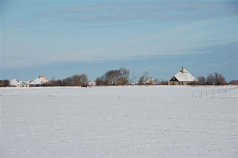 Hoge Berggebied in winter