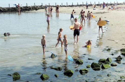 project 20064 vernieuwing speelwrak en waddenstrand